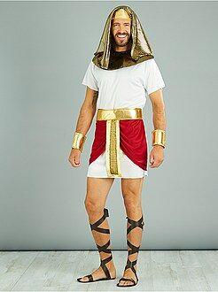 Homme Déguisement roi égyptien