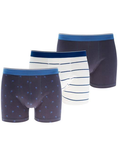 Lot de 3 boxers                                                                 bleu/blanc