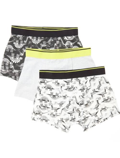 Lot de 3 boxers imprimés 'dinosaures'                                         gris Garçon