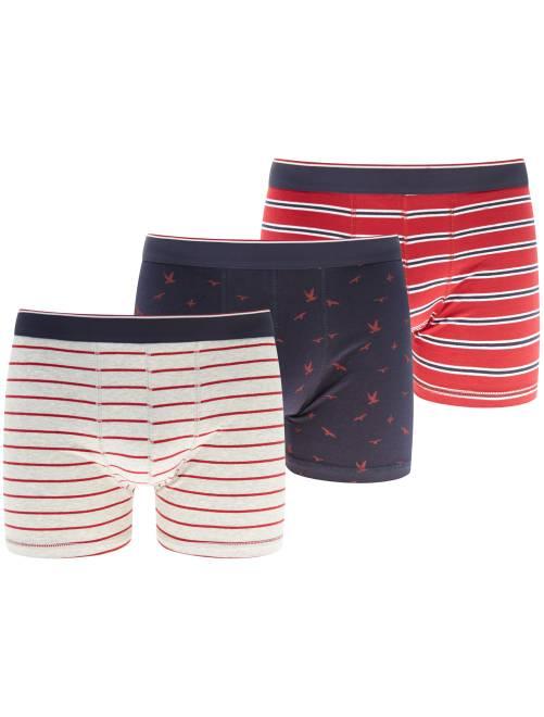 Lot de 3 boxers                                                                 rouge/gris Homme