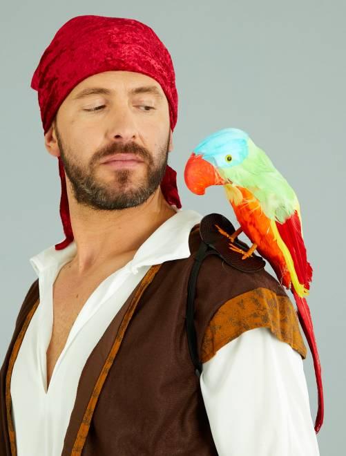 Perroquet de pirate                             multicolore