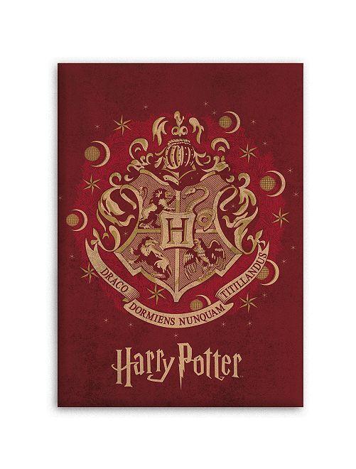 Plaid en polaire 'Harry Potter'                             bordeaux