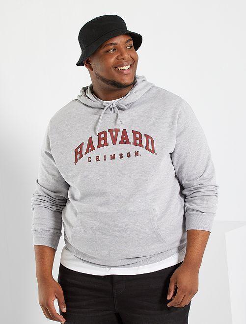 Sweat 'Harvard University'                             gris clair chiné